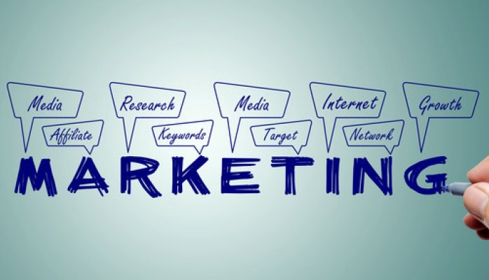 Wanted marketing executives