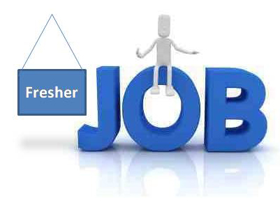 requires fresher & experienced