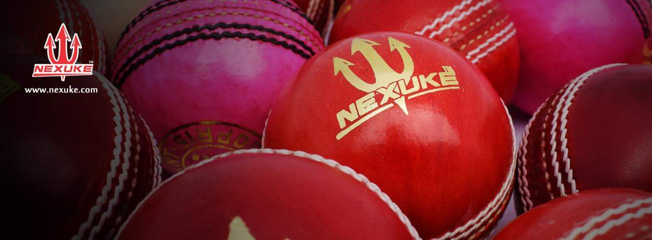 Cricket Leather Ball Manufacturer