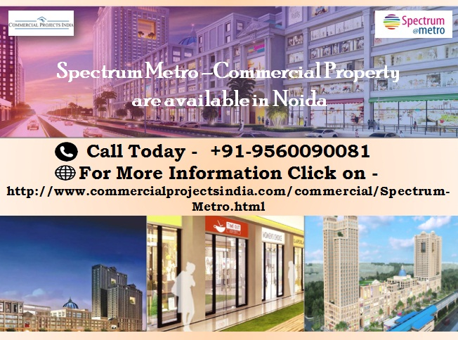 Spectrum Metro-Commercial Property In Noida
